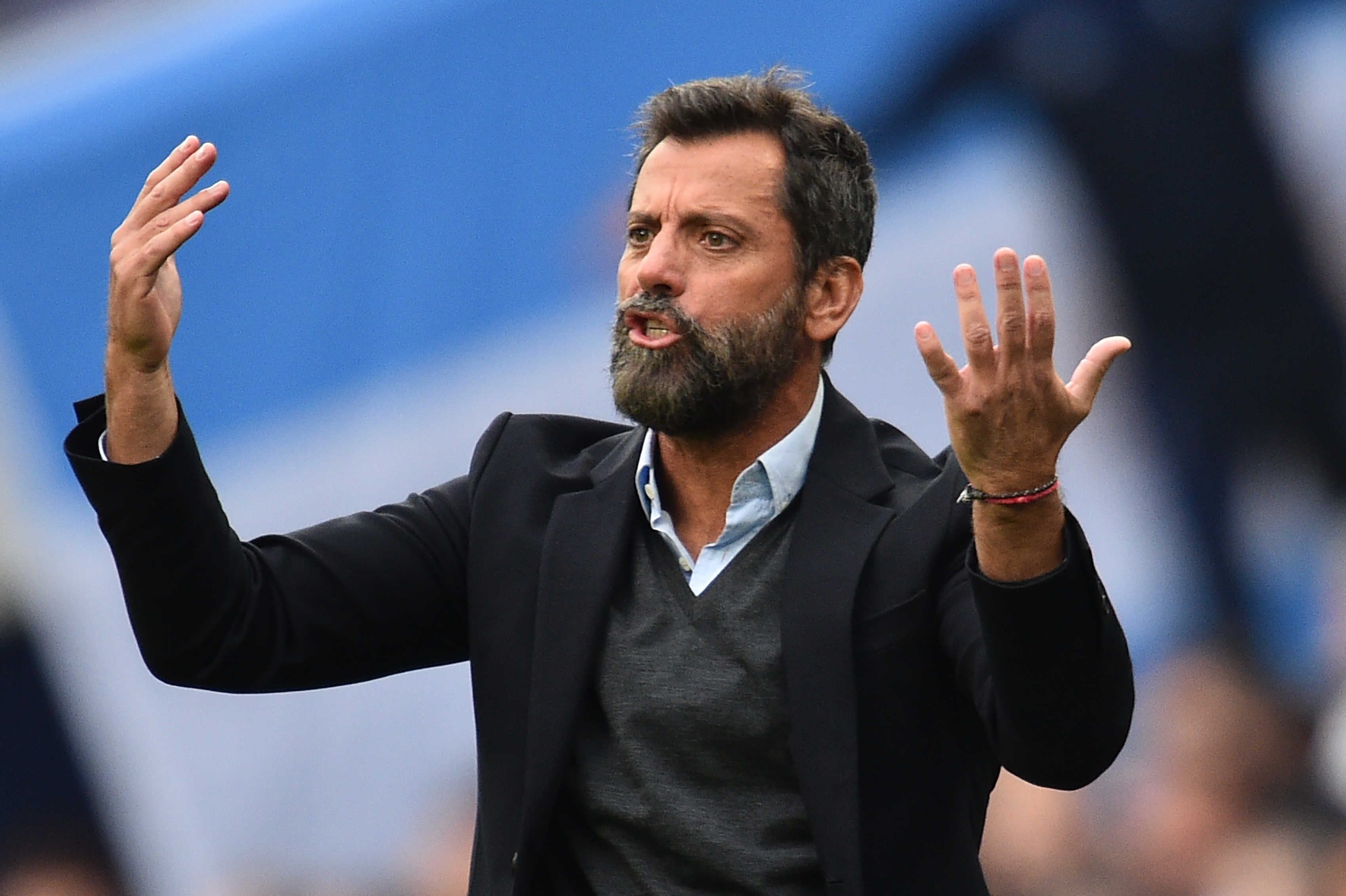 Watford's demise: why blisful ignorance has cost the Hornets dearly - opinion